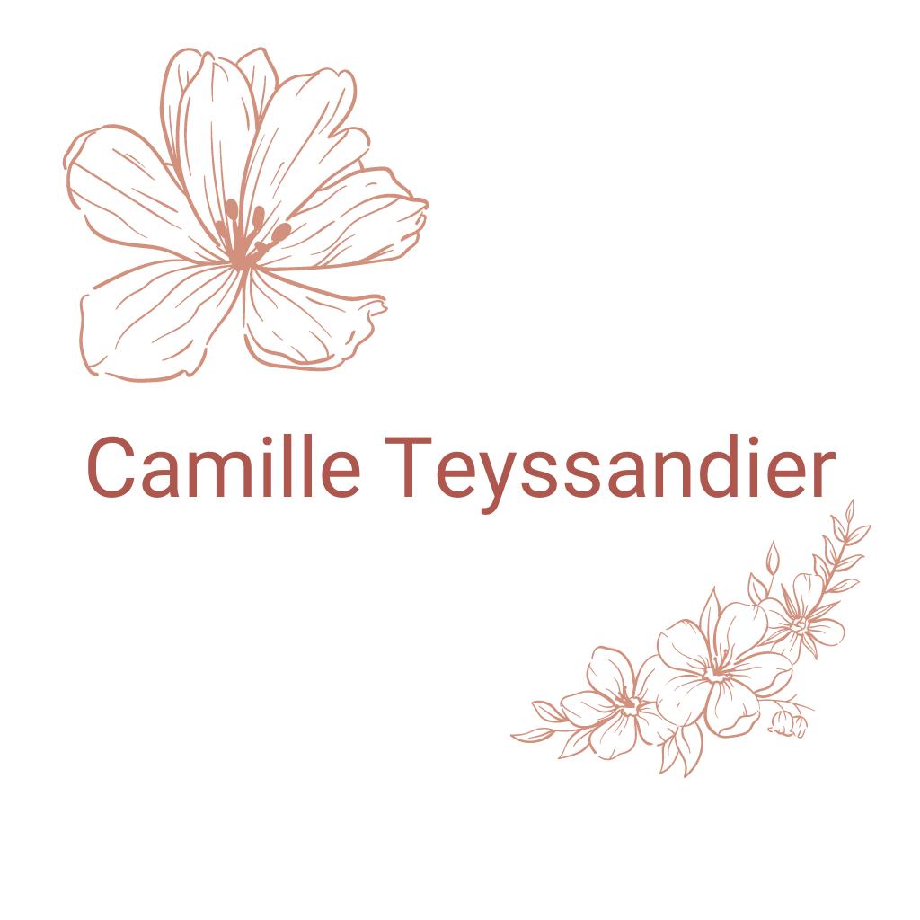 Logo Camille Teyssandier